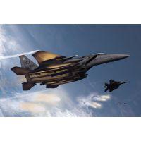 """Avion USAF F-15E """"333rd Fighter Squadron"""""""