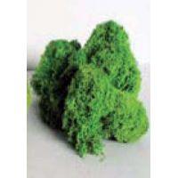 Lichen vert moyen (100g)