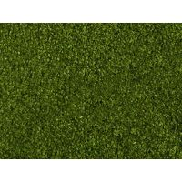 Feuillage (foliage) vert moyen