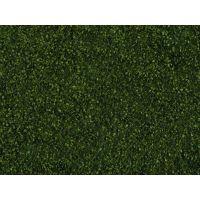 Feuillage (foliage) vert foncé