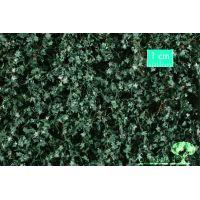 Flocage lierre vert été feuilles moyennes