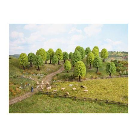 25 arbres feuillus (50-90 mm)